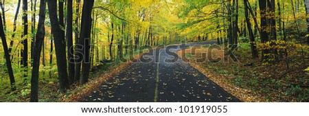 This is the Greylock State Reservation in autumn. There is a road that winds through the forest up to the right of the image. - stock photo