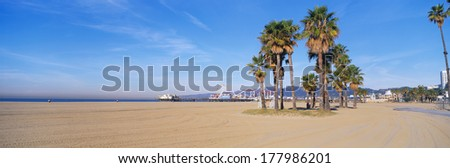 This is the Santa Monica Beach and pier with its amusement park. There are palm trees in the foreground. - stock photo