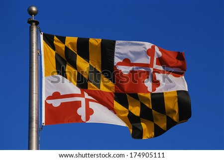 This is the State Flag flying on a flagpole against a blue sky. The flag has black and white checks with its symbol in the center. - stock photo