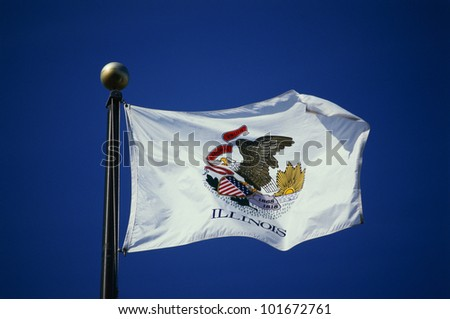 This is the State Flag of Illinois waving in the wind. It is on a flagpole, against a blue sky. The main image we see is of an eagle in the center against a white background.