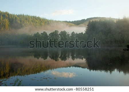 This loch has a beaver lodge and 5 beavers on the Aigas estate in the Scottish Highlands