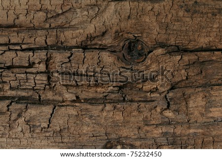 This macro closeup of a weather worn oak or pine board has a great texture and would be perfect for a background. - stock photo