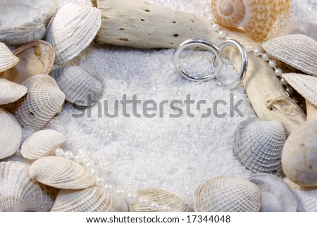 This photograph includes shells, driftwood, white sand and rings with room for copy.