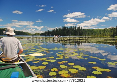 This picture was taken on Fran Lake in the Quetico Wilderness - stock photo