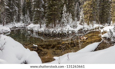 This placid pool was found on a mountain trout stream in the Tetons.  Wyoming Idaho border. - stock photo