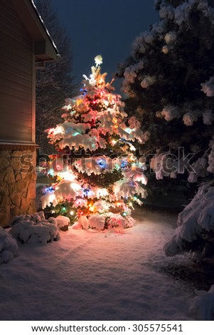 This Snow Covered Christmas Tree stands out brightly against the dark blue tones of late evening light and a brisk snowfall on Christmas Eve night. - stock photo