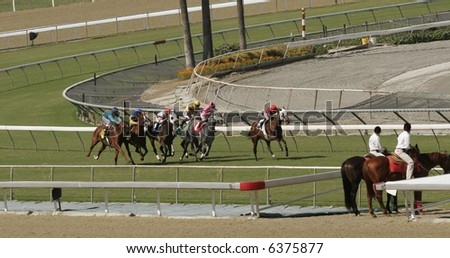 Thoroughbred Horses Racing on Grass - stock photo