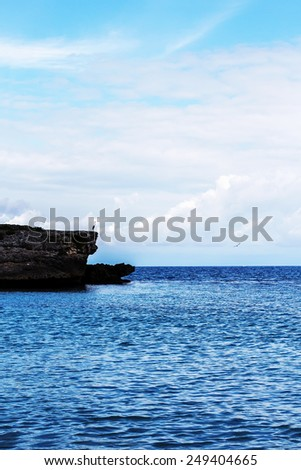 Thoughtful heron on the rock muse upon a distant scene - stock photo