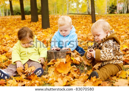 Three babies sitting on yellow leaves - stock photo