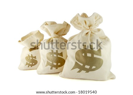 Three bags with money on the white background - stock photo