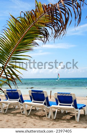 Three beach chairs on a beach with a palm-tree and a sail boat on the background