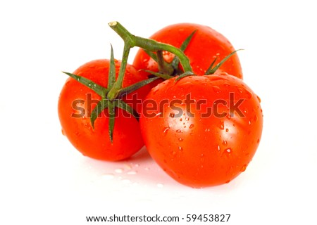 three beautiful fresh tomato in white background - stock photo
