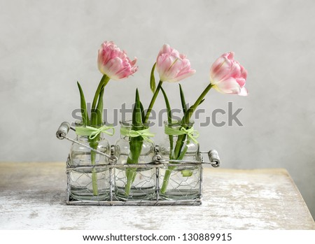 Three beautiful pastel colored pink tulips in glass vases and decorative metal basket - stock photo