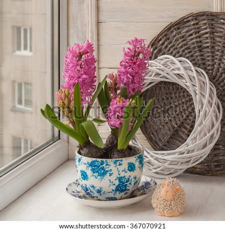 Three beautiful pink hyacinth in a pot with a vintage pattern next to the sweet lamb on the window. (mass-produced)