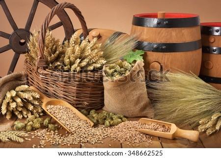 three beer barrels with hops, wheat, grain, barley and malt - stock photo