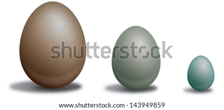 Three bird eggs in different sizes and colors