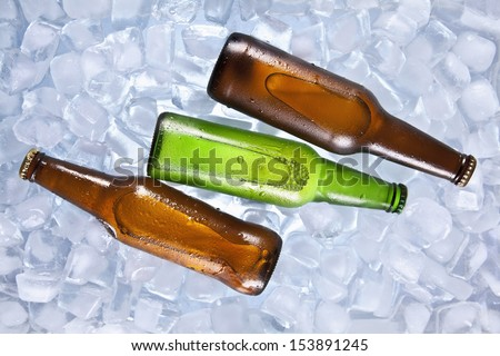 Three bottles of beer cooling on ice.