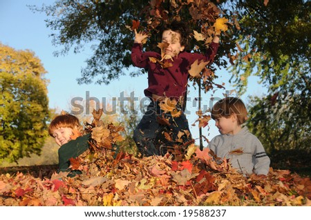 Three brothers romp in the fallen leaves on a sunny autumn afternoon - stock photo