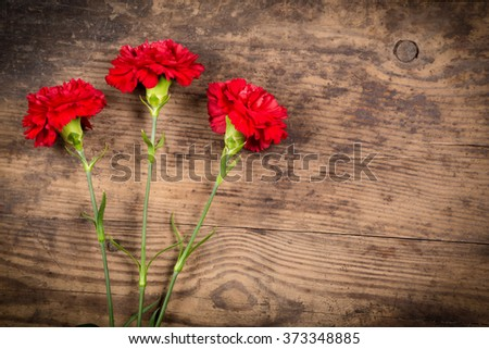 three carnation flowers on wooden background with empty space - stock photo