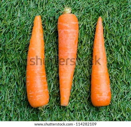 three carrots on a background of green grass