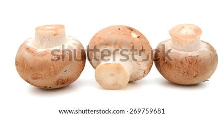 three champignon mushrooms on white background  - stock photo