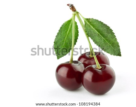Three cherries on white background