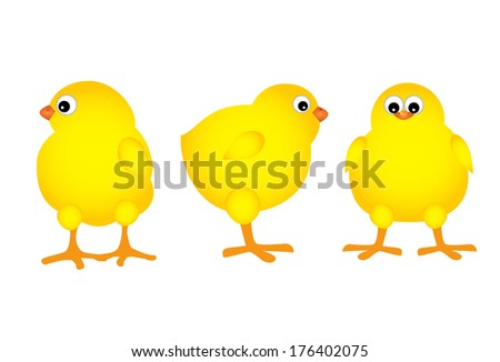 three chicks on the white background - stock photo