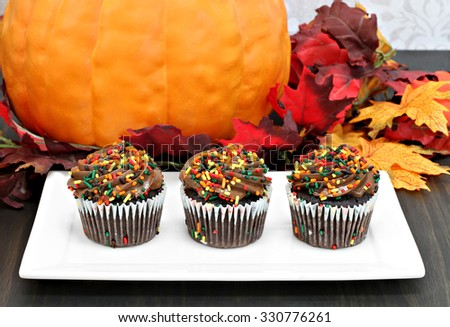 Three chocolate cupcakes decorated for fall in front of autumn decorations. - stock photo