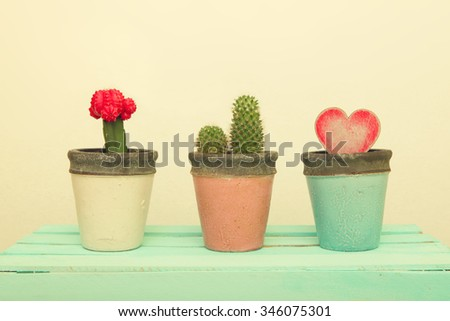 Three clay pot with cactus and Wooden Heart.Valentines Day background with heart leave in a pot