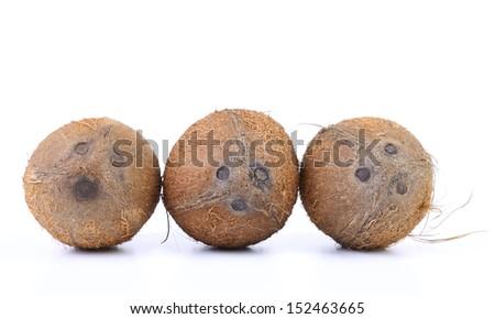 Three coconuts isolated - stock photo
