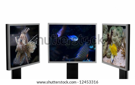 Three computer monitors with three different underwater pictures inside. - stock photo