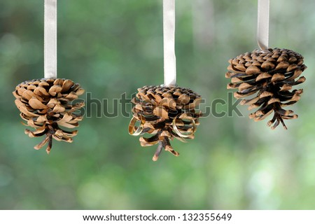three cones with wedding rings hanging on white ribbon - stock photo