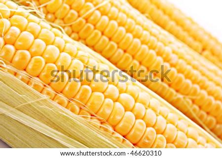 Three corns background - stock photo