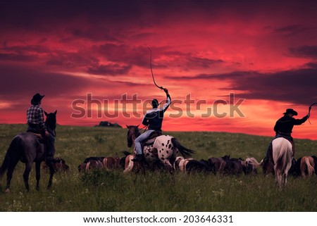Three cowboys drive herd of horses on a sunset - stock photo