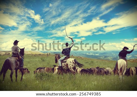 Three cowboys drive herd of horses , toning, vignetting - stock photo
