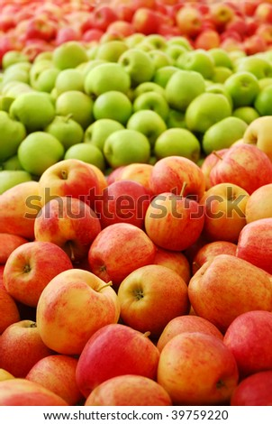 Three different apple varieties at a fruit farm - stock photo