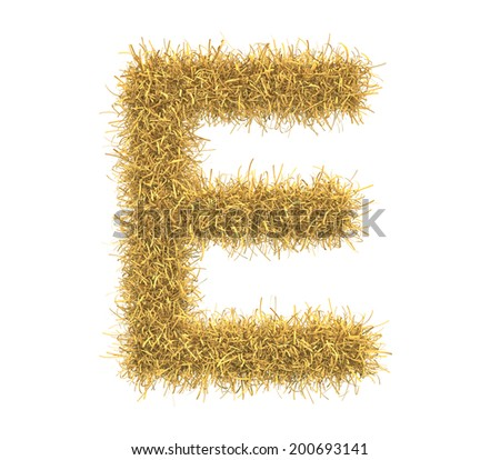 Three-dimensional illustration of letter E of hay isolated on white background - stock photo