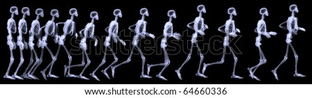 Three dimensional rendering illustration,sequenced radiography of a human skeleton running. - stock photo