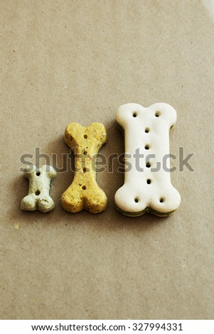 Three dog dry food biscuits next to each other - stock photo
