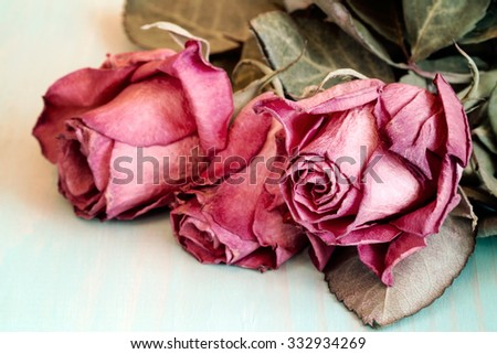 Three dried roses on old wooden background. Vintage style. - stock photo