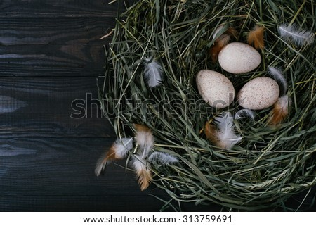Three eggs in a nest of green grass on a black wooden background - stock photo