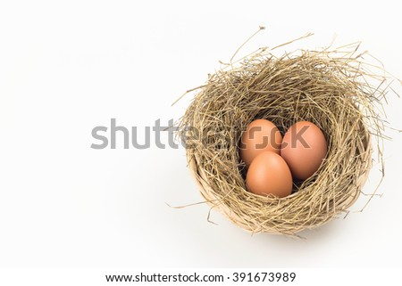 Three eggs in nest on white background.