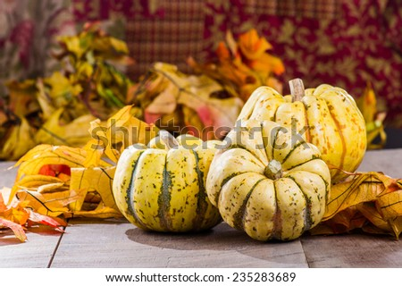 Three fall squash with fall leaves on wooden table - stock photo