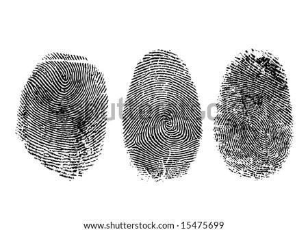 Three finger prints isolated on white - stock photo
