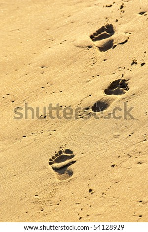 three footprints in the golden wet sand of a beach - stock photo