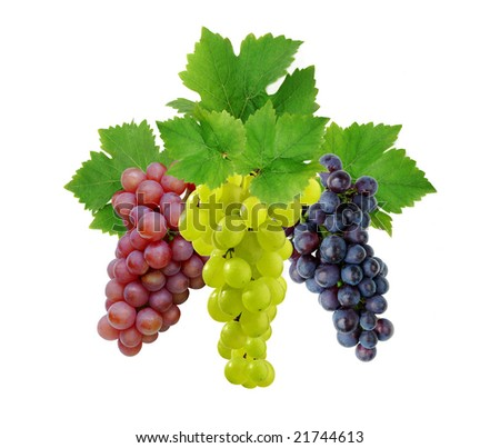 Three fresh grapes with leaves - stock photo