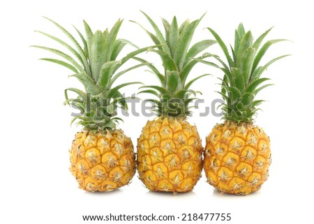 three fresh mini pineapple fruits on a white background - stock photo