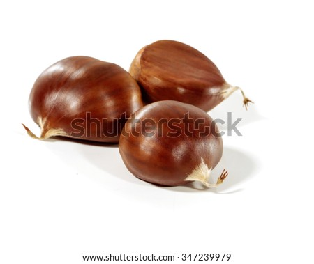 Three fresh shiny chestnuts isolated on a white background. Soft focus. - stock photo