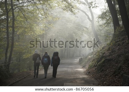 Three friends on the walk. - stock photo
