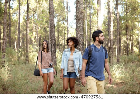 Three friends strolling leisurely through a pine tree forest in the late afternoon sunshine while wearing casual clothing